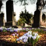 Grave-flowers